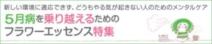 smh_titlebanner_gogatsubyou