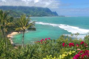 hawaiian_image-1
